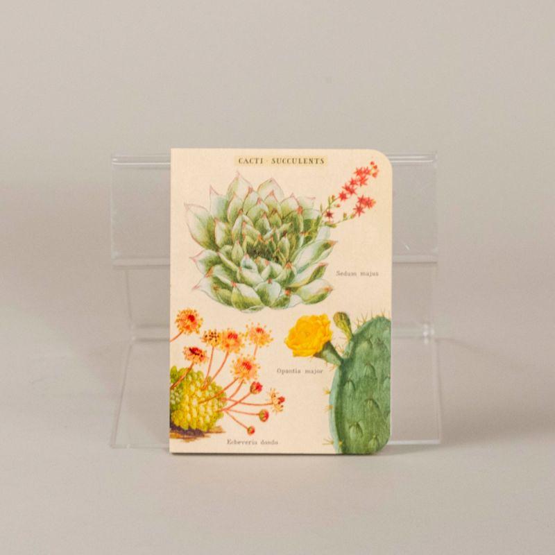 Notesbog med kaktus, sæt a 3 stk. 2