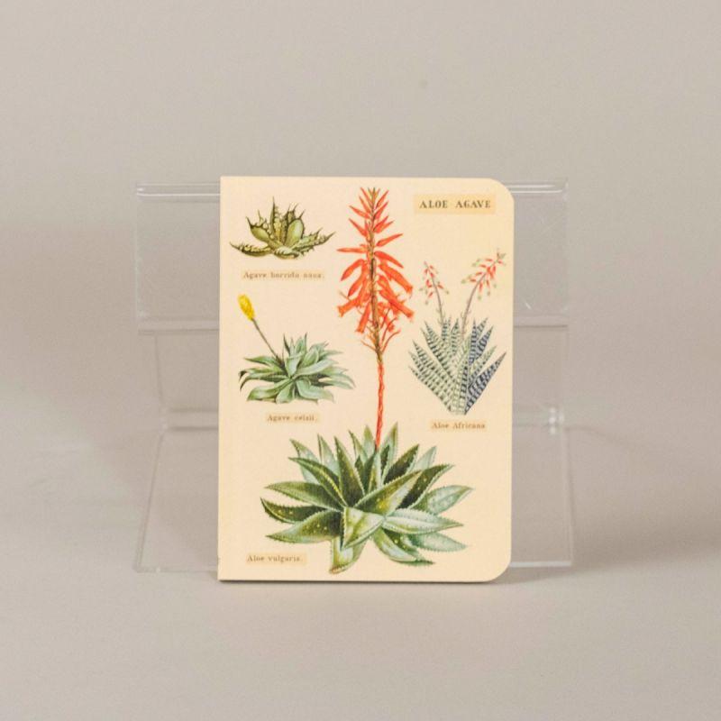 Notesbog med kaktus, sæt a 3 stk. 4
