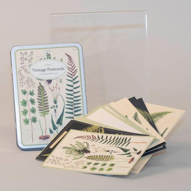 Postkort i metalæske med motiv af bregner 1