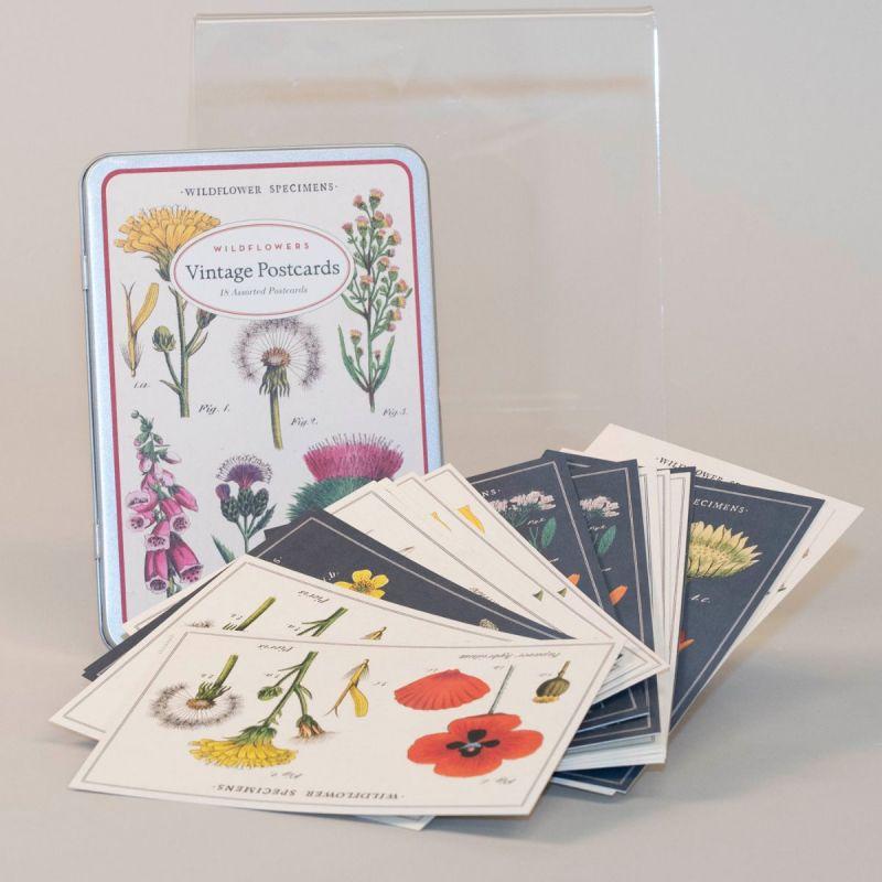 Postkort i metalæske med motiv af vilde blomster 1
