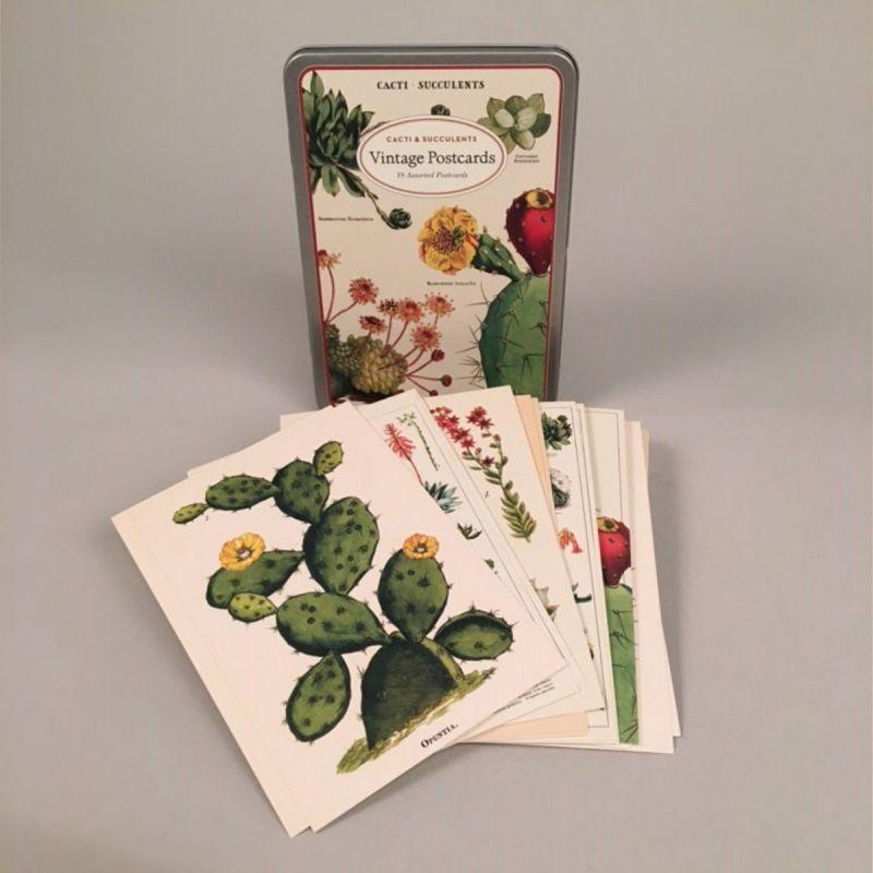 Postkort i metalæske med motiv af kaktus og sukkulenter 1