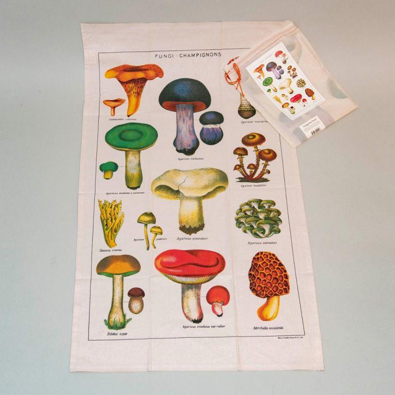Viskestykke svampe 1