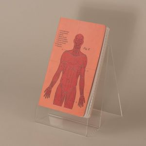 Notesbog med kroppens muskler