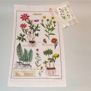 Viskestykke herbarium