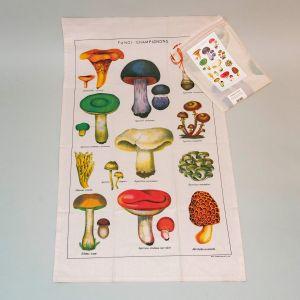 Viskestykke svampe