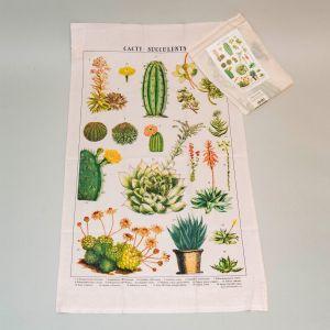 Viskestykke Kaktus/Sukkulenter