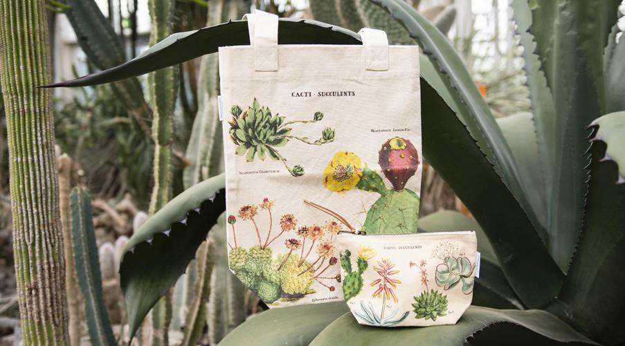 Botanik Se det store udvalg af ting med planter...
